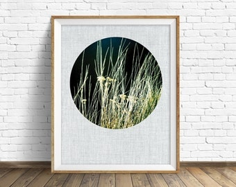 "nature photography, instant download printable art, nature prints, modern, contemporary, minimalist, printable art, prints - ""Wild Grasses"""
