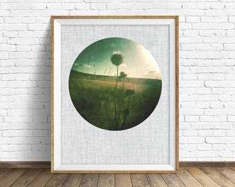 "nature photography, large art, large wall art, printable art, instant download printable art, nature prints, rustic - ""Pale Light of Summer"""