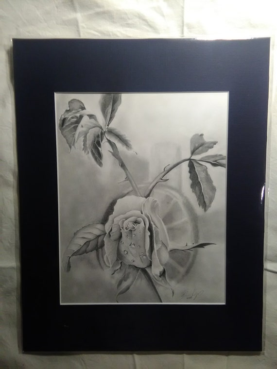 Rose Print Of Original Pencil Drawing