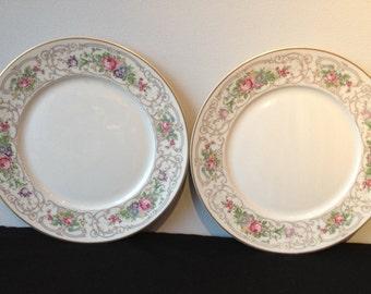 Set of 2 Lamberton China Flora Dinner Plates