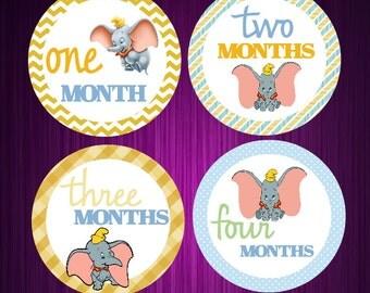Dumbo- Monthly Baby Stickers