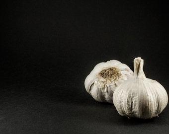 Garlic Print - Garlic Photo - Still Life Photo - Food Printable - Digital Photo - Digital Download - Instant Download - Kitchen Decor