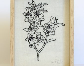 Almond Blossoms. Framed Embroidery, Floral Diagram Design