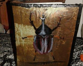 Beetle sketch book/journal