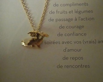Locket and chain, color gold 'dragon'