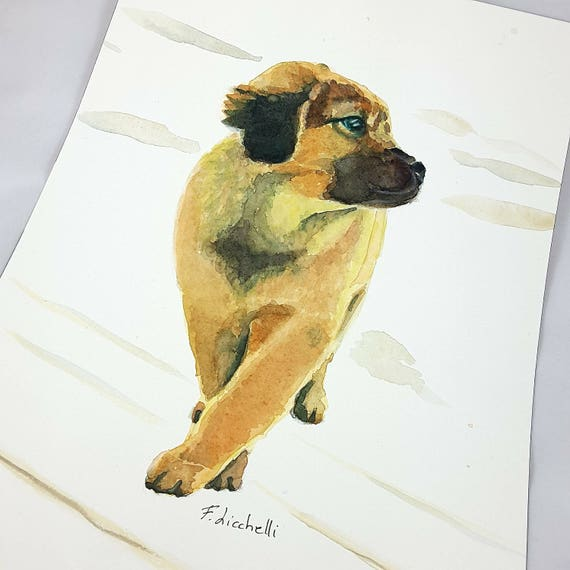 Shepherd dog, original watercolor by Francesca Licchelli, ooak, gift idea for baptism, birth, baby shower, wall art, home decoration.