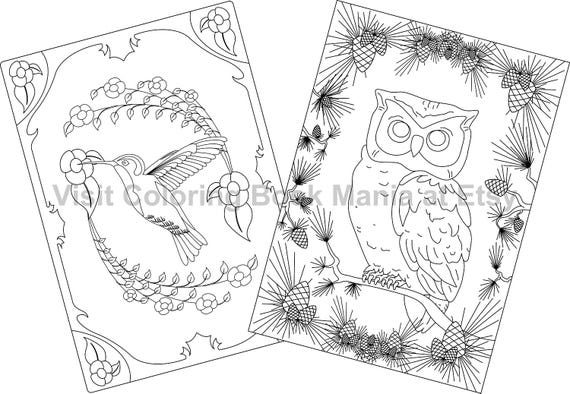 """NOTECARDS to COLOR, 5"""" x 7"""" cards with envelopes - 4 delightful Nature Themed cards - 2 each of 2 designs - Owl x2 & Hummingbird x2!!!"""