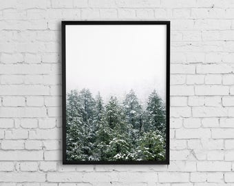 Forest print, Forest photography art, Nature photography print, Printable photo, Nature print, Nature art, Wilderness Poster Woodland Prints