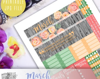 50 % OFF! HAPPY PLANNER March Monthly View Kit – Printable Planner Stickers