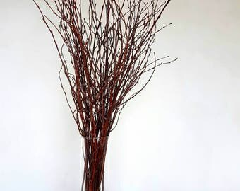 100 White birch branches, Natural Birch Twigs,Thin birch branches,Decorative White Birch Branches,Wedding Branches,Rustic Home Decor