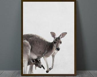 Kangaroo Print, Kangaroo Wall Decor, Kangaroo Poster, Kangaroo, Animal Print Wall Decor, Printable Kangaroo Wall Art