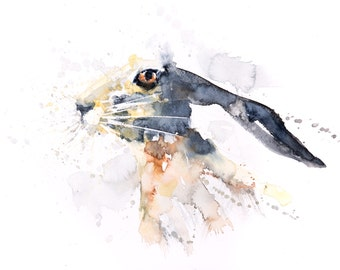 Hare No.2 - Signed limited Edition Print