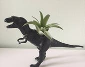 Custom Black T-rex Planter
