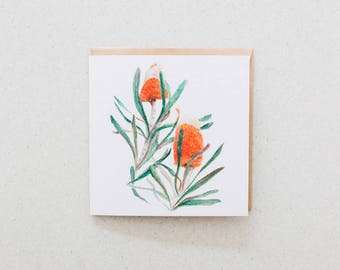 Banksia - blank watercolour greeting card - recycled, 125mm square - with kraft envelope