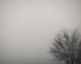 Tree in Fog Photograph,  Dark Photography, Tree, Silhouette,  Prints and Canvas available, Home Decor, Art, Large Art,