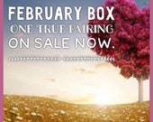 Bookish monthly subscription box - February theme - one true pairing