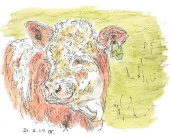 Hereford Cow Digital Print