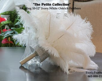 """Limited Time! 1-100 Ostrich Feathers """" The Petite Collection"""" Ivory White 10-12"""" ostrich feathers. Amazing Feathers. Wedding Centerpiece"""