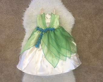 Tiana Costume / Princess Tiana Dolly and Me Matching Dresses / The Princess and the Frog Costume