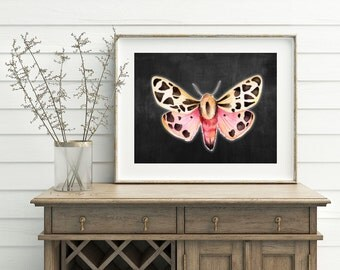 Pink Moth Art Print - Black Moth Artwork, Watercolor Moth, Printable Moth, Glowing Moth, Butterfly and Moth, Digital download, 3d Moth art