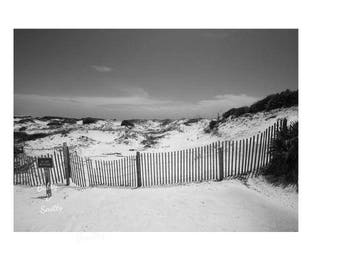 Instant Download, Digital Download, Beach Photography, Black and White Photography, Wall Art, Art for Home, Printable