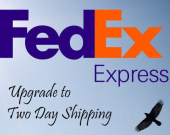 Fedex Express Shipping Domestic USA - 2 business days