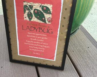 Ladybug Advice Framed Verse