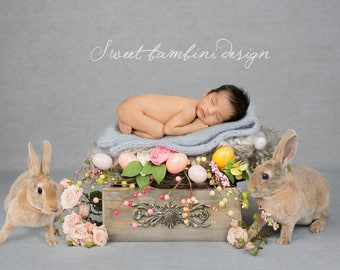 EASTER SPECIAL DEAL - Newborn Digital Background - Vintage drawer with real bunnies