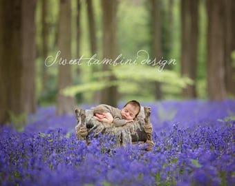 Newborn Digital Backdrop - Natural, Rustic Bed in Bluebell Wood