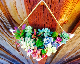 Geometric succulent planter gift for mom gift birthday gift office succulent gift box hanging succulent planter garden succulent Backyard