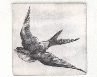 """Original etching """"Swallow"""""""