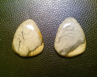Beautiful Guitar Picks made from Picture Jasper
