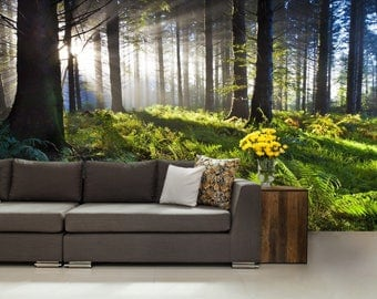 Forest MURAL, Wallpeper nature, forest sunrise wall mural, self-adhesive vinly, forest fog wall mural, forest wall decal, forest wallpaper