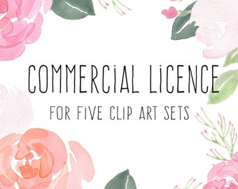 Commercial Licence - 5 sets