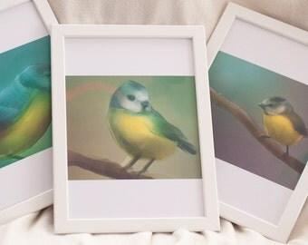 Blue Tit Triptych Art Prints Digitally Painted Digital Art Prints 21x30cm Interior Decoration Paintings