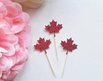 Canada Day cupcake toppers