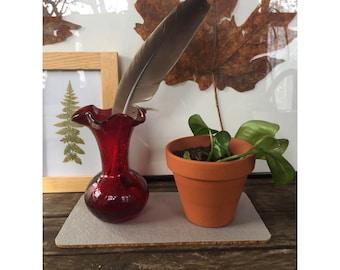 Plant Coaster - Cotton Twill and Cork