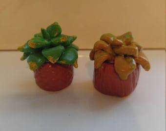 Mini Polymer Clay Plants
