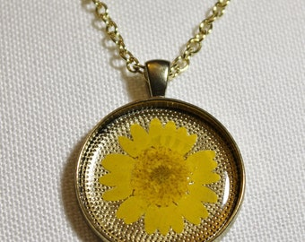 Yellow Daisy Pressed Flower Necklace