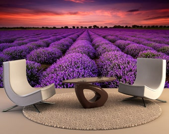 Lavender field at sunset Wall Mural, Wall Decal, Removable Wall Wallpaper Wall Mural Wall Decal, Wall Art