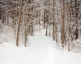 Winter Wonderland Pathway digital backdrop