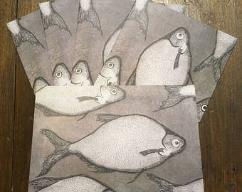 Sea Bass Etching Greeting Cards - Pack of 5