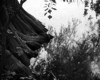 "Black and white printable wall art nature lake ""DEEPER"""