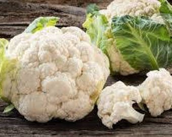 Cauliflower Heirloom Seeds, FREE SHIPPING, 300 seeds, Rabbit Rescue Donation