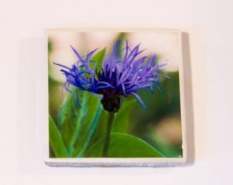 Garden Flowers 3 Ceramic Tile Magnets