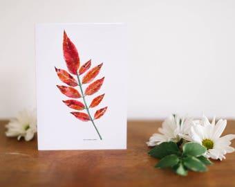 Orange Sumac Leaf Greeting Card and Note Card