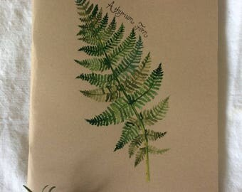 A4 Journal/ Notebook With handpainted Athyrium Fern illustrated cover