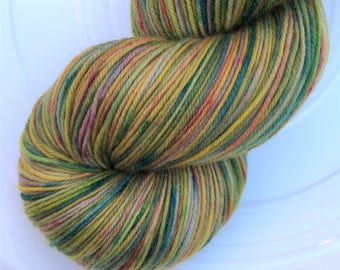 Fingering weight SUPERSOFT SOCK 'Autumn Is Coming' 110g hand dyed merino/nylon skein