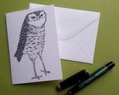 nefarious owl is up to no good paper greeting card note card