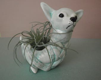 Chihuahua Duck Planter